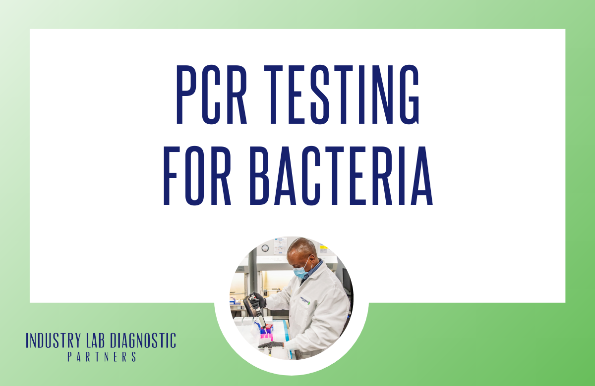 PCR Testing for Bacteria